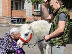 Лошадь, природы созданье чудесное....