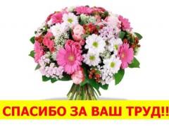 Письмо благодарности от Валентины Васильевны Коловангиной
